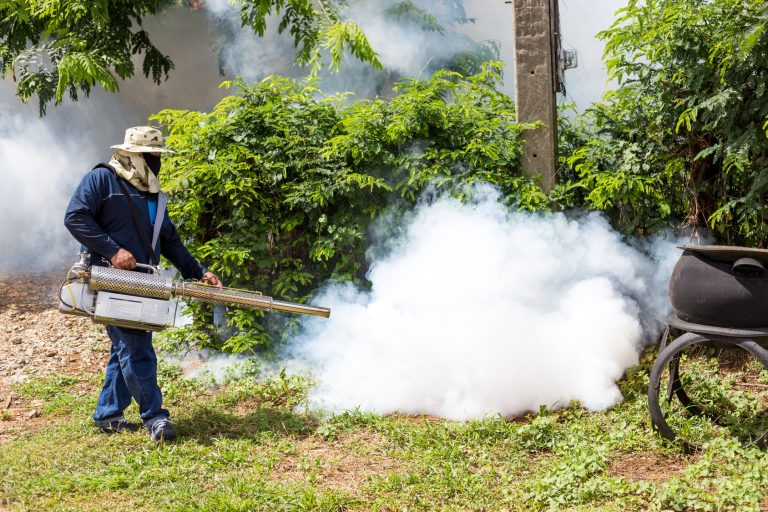 3 Reasons Why Commercial Pest Control Is a Must for Institutions